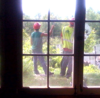 the hot men tearing down trees.